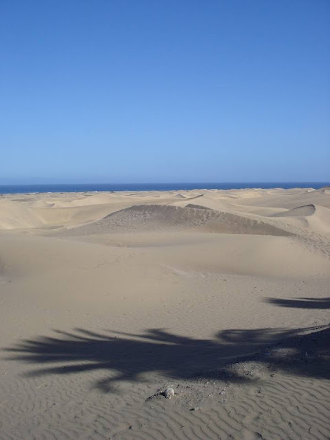 Die Dünen