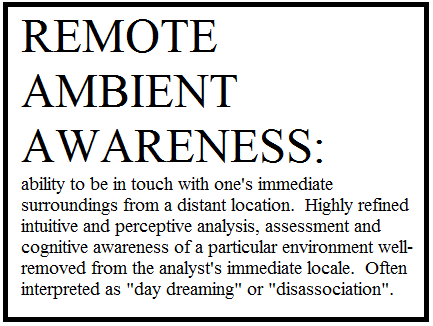 Situational Awareness or Remote Ambient Awareness?