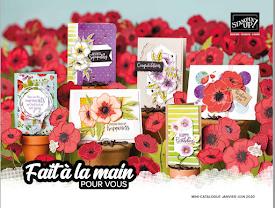 Mini-Catalogue Janvier- Juin 2020