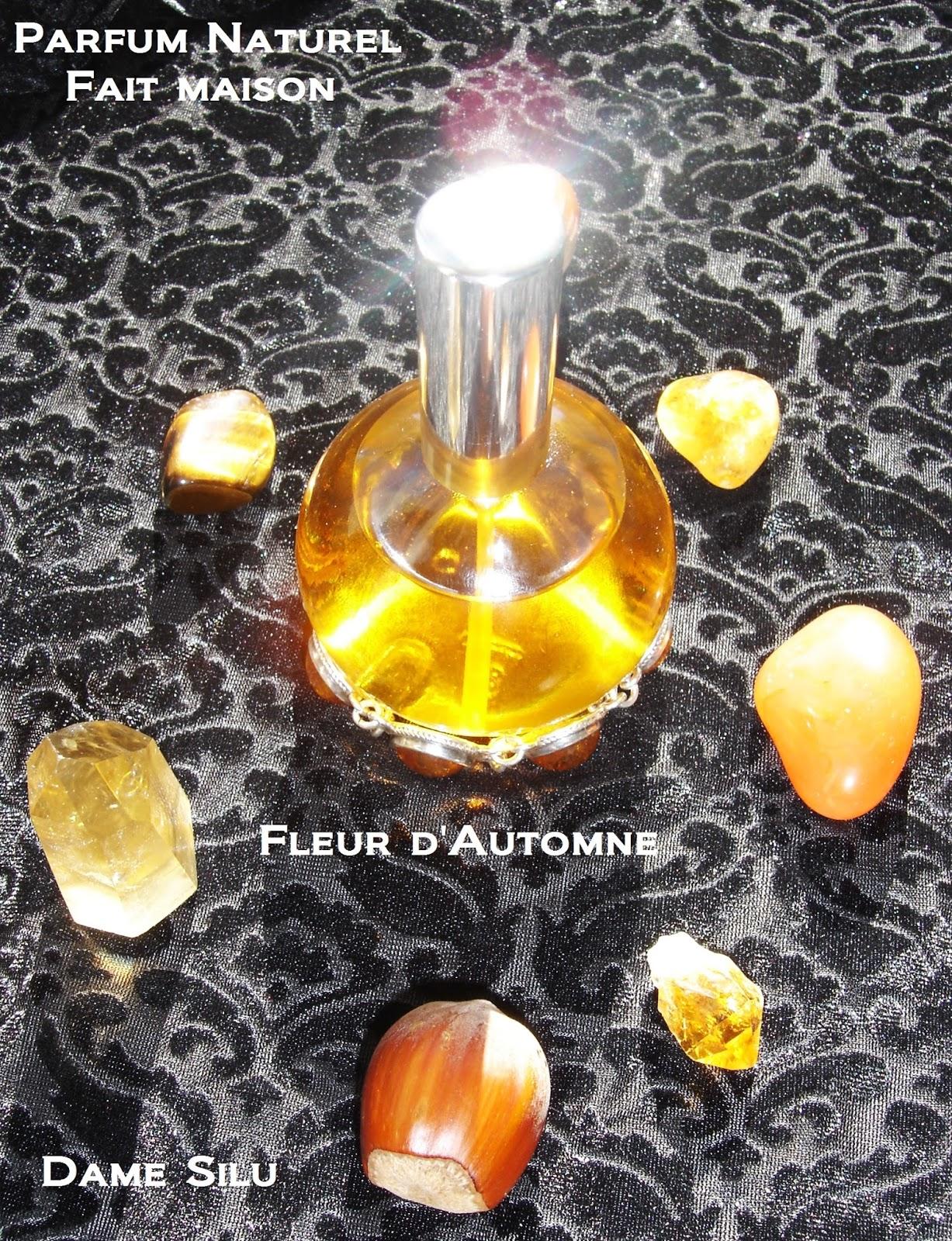 Dame Silu l'Elfe Noire: Parfum naturel fait maison : Fleur d'Automne