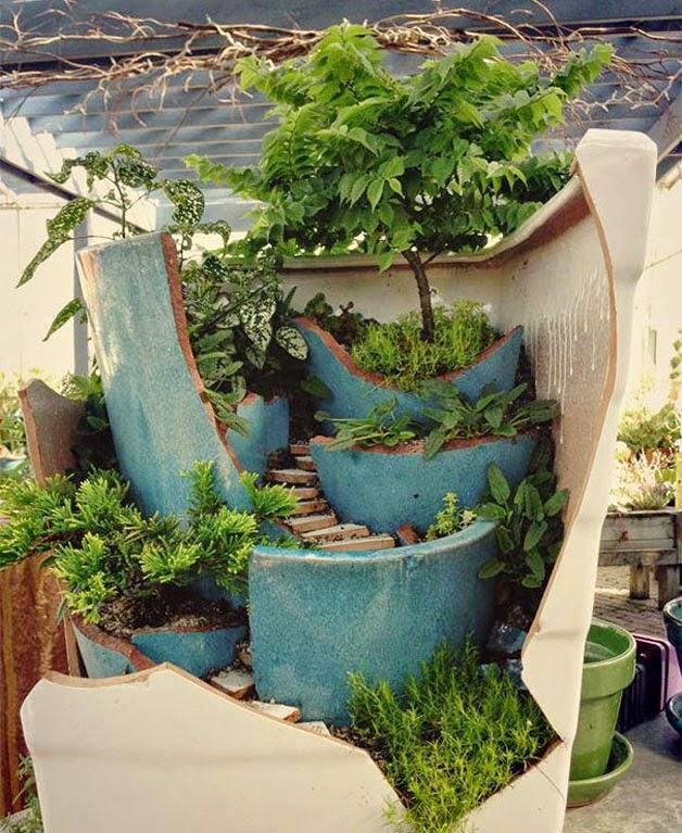 mini jardins em vaso:Esta composição parece uma paisagem com árvore e degraus rodeados