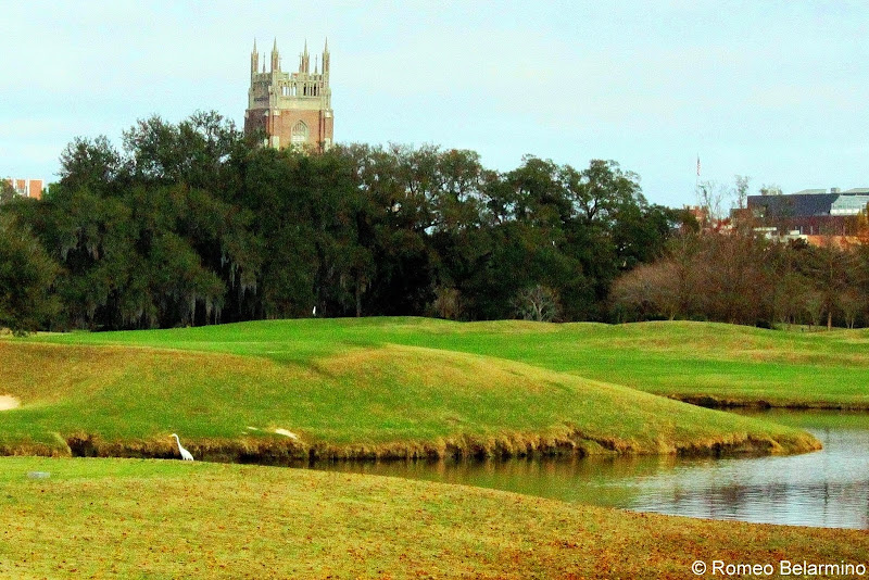 Audubon Park Golf Course Water, Green, and Church New Orleans