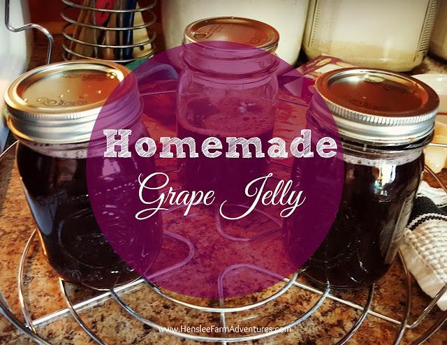 Homemade Grape Jelly  www.hensleefarmadventures.com