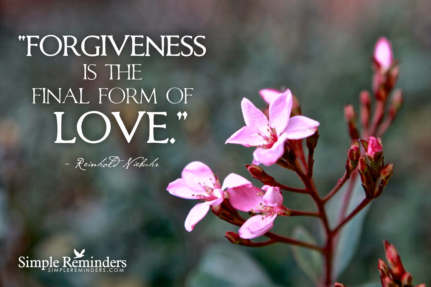 "love forgiveness The scriptures refer to forgiveness in two ways the savior counseled, ""love your enemies, bless them that curse you, do good to them that hate you."