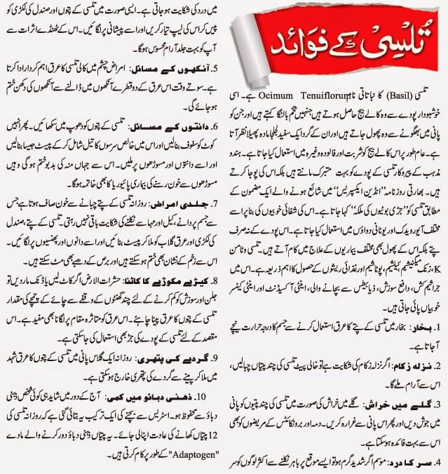 Tulsi Benefits In Urdu Hindi - Tulsi Ke Fayde