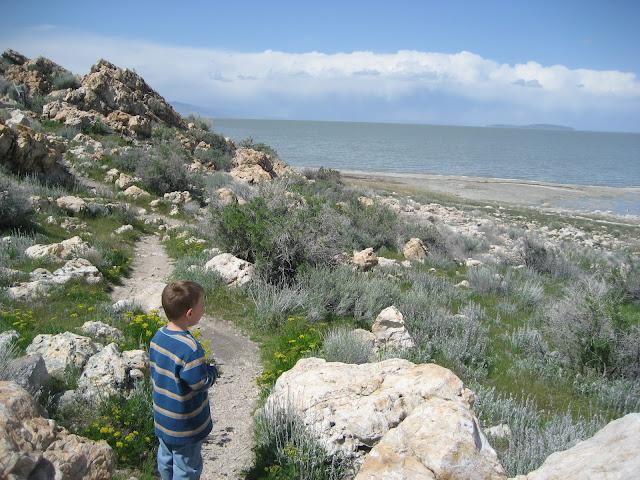 Antelope Island State Park Junior Ranger