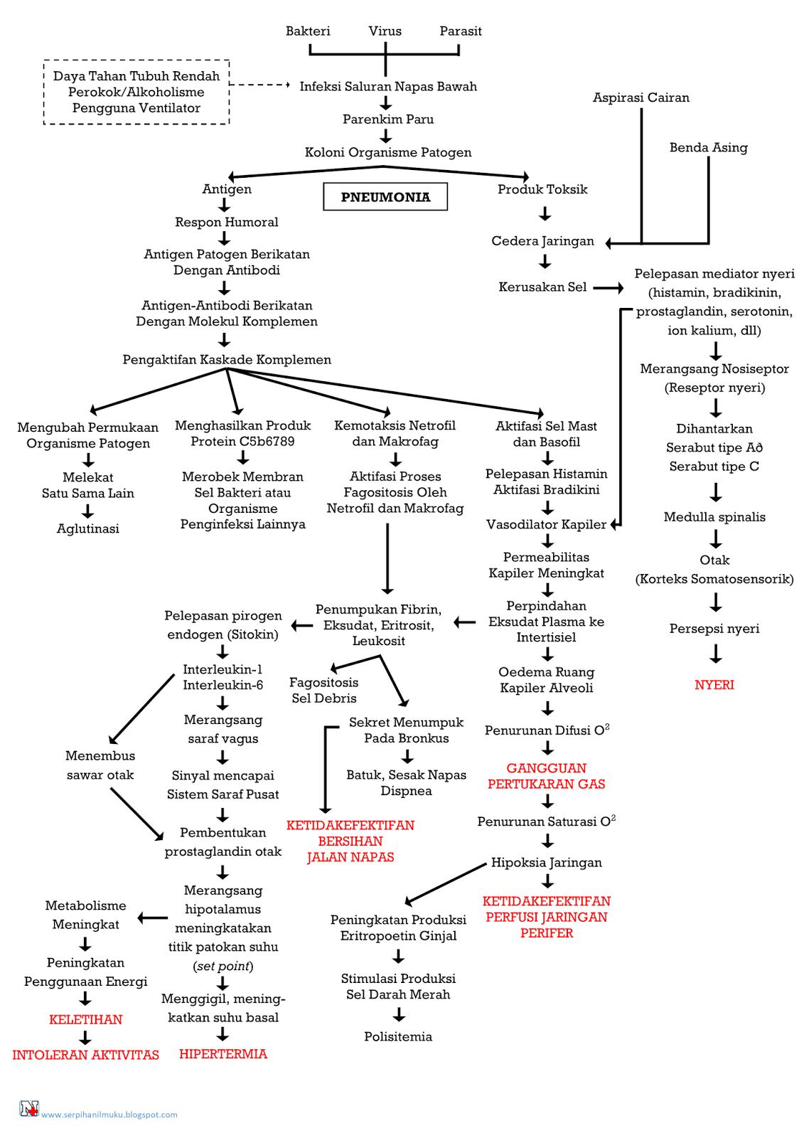 Perjalanan Penyakit Pneumonia Hingga Diagnosis Keperawatan