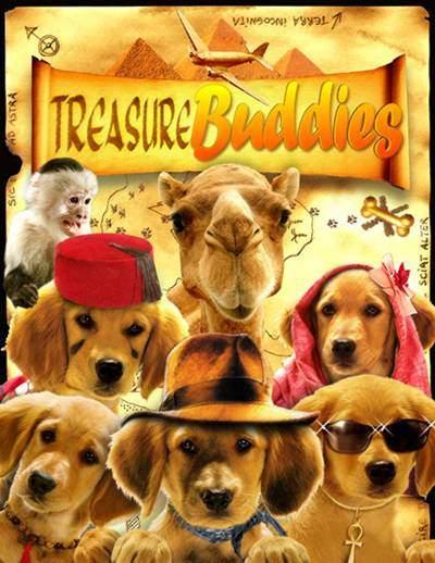 Treasure Buddies DVDR NTSC Descargar Español Latino ISO 2012