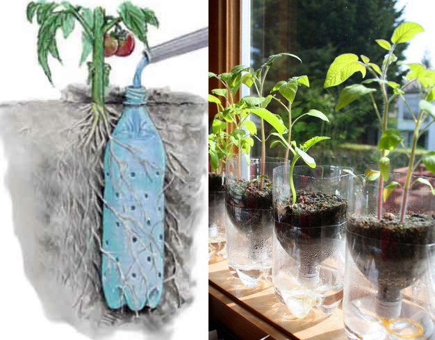 Star of the east 9 great ways to recycle plastic bottles for Ways to reuse water bottles