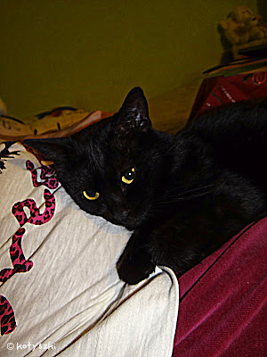Mikesz,kotyszki,