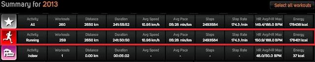 Total alergare 2013