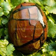 Batu Permata Sisik Naga - SP817