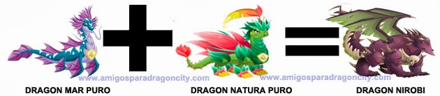 como sacar el dragon nirobi en dragon city 1