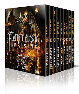 Fantasy Uprising boxed set coming soon!