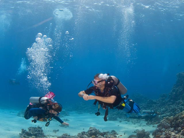 Koh tao thailand travel info and travel guide tourist destinations - Dive in koh tao ...