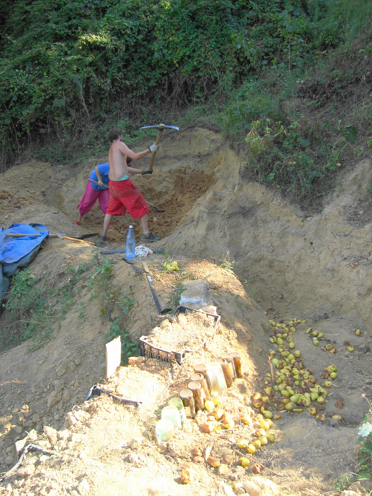 Path To Self Sufficiency Of Pond Digging Celebrating And