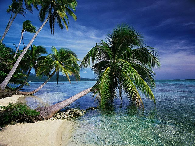 photography tropical island - photo #22