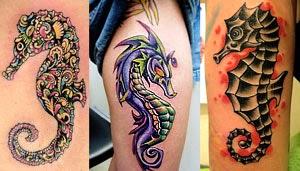 Fotos de tattoo de cavalo marinho