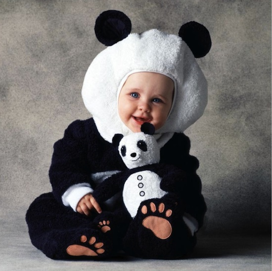 pandarte  pandas u00e1gok