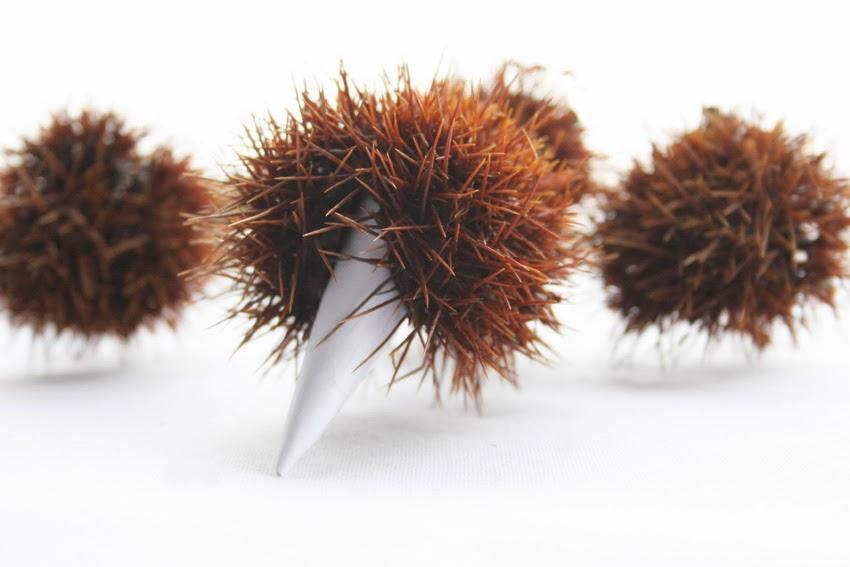 Manualidad: Erizo con cáscara de castaña4