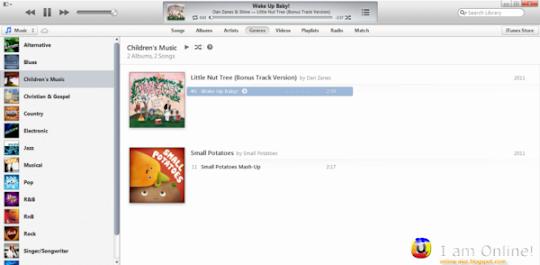 iTunes 11 Genre Tab