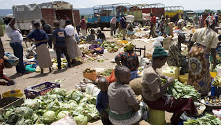 conclusion of overpopulation and poverty How does poverty affect overpopulation he draws the conclusion that as this site will explore the correlation between poverty and overpopulation by.