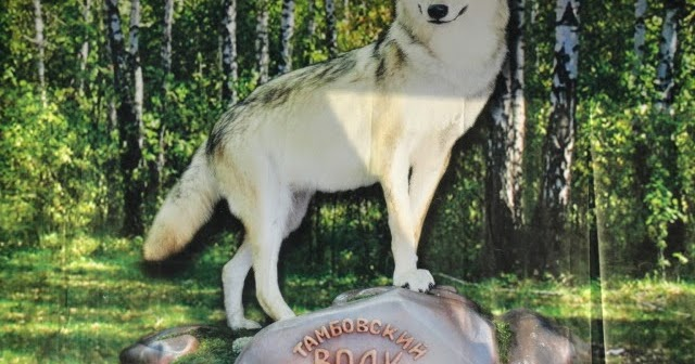 Тамбовский волк своими руками 23