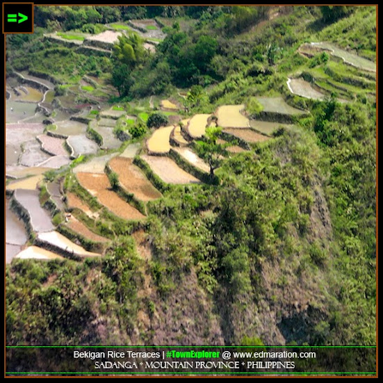 Bekigan Rice Terraces in Sadanga