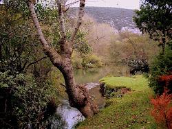 El rio Ebro a su paso por Tudanca