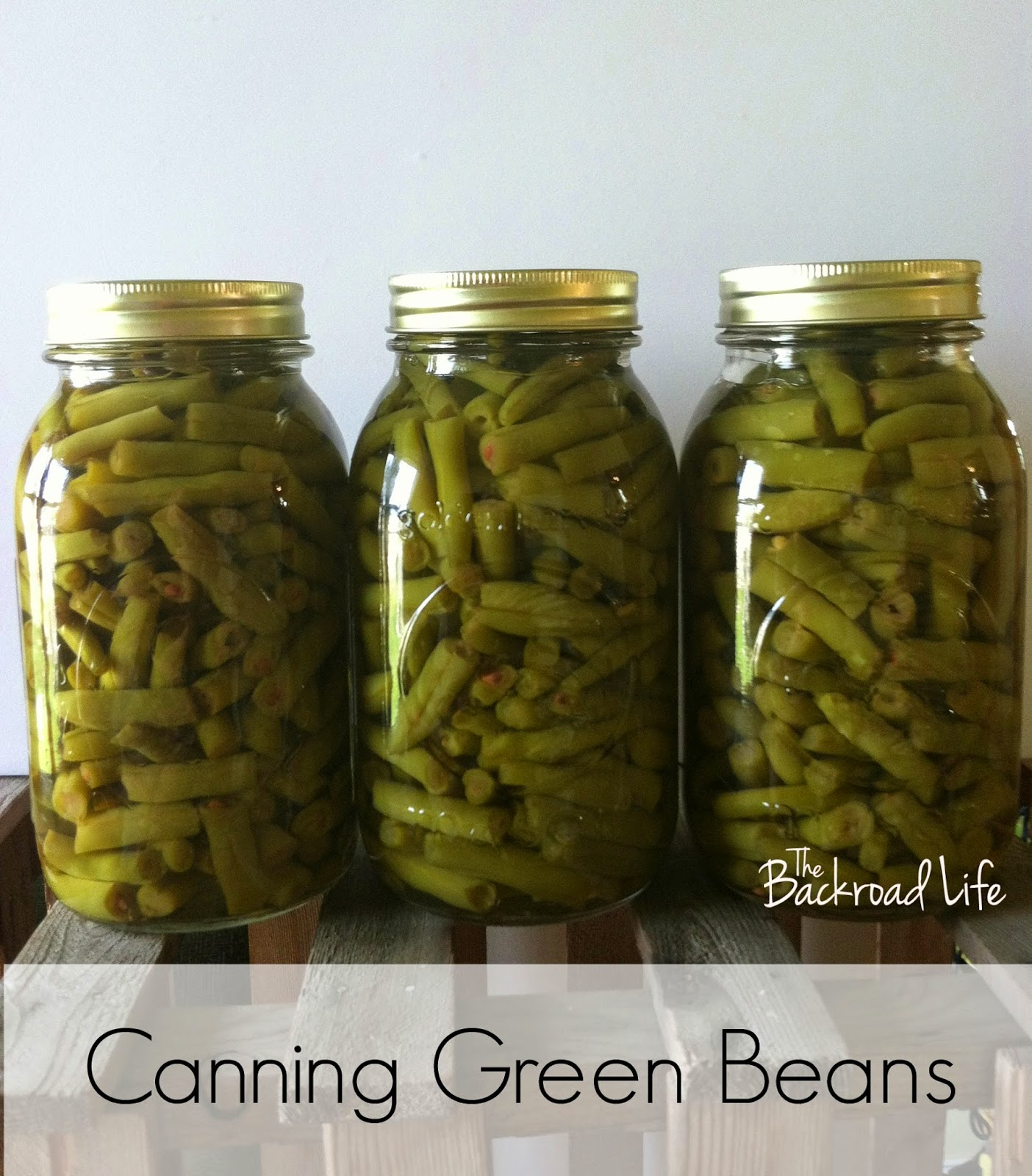 Canning green beans are a great way to enjoy produce well after the gardening season.