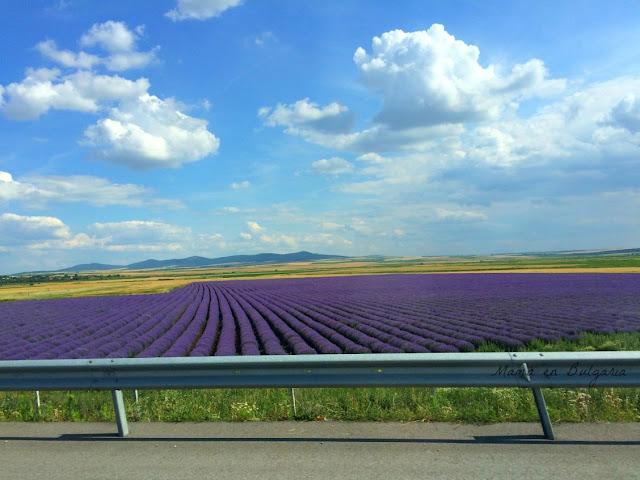 Campos de lavanda autopista Bulgaria
