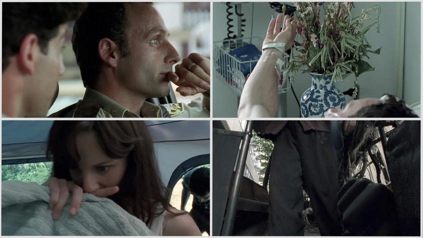 The Walking Dead Temporada 1 HD 720p Latino