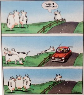Development Comic (thanks to Gary Larson)