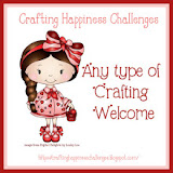 Any craft Challenge Blog