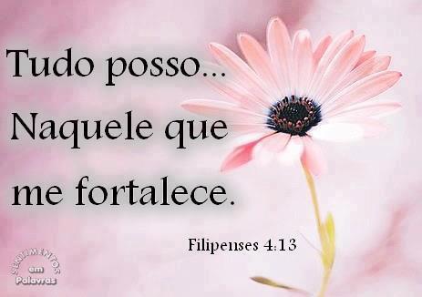 Filipenses 4:13 Tudo posso naquele que me fortalece.