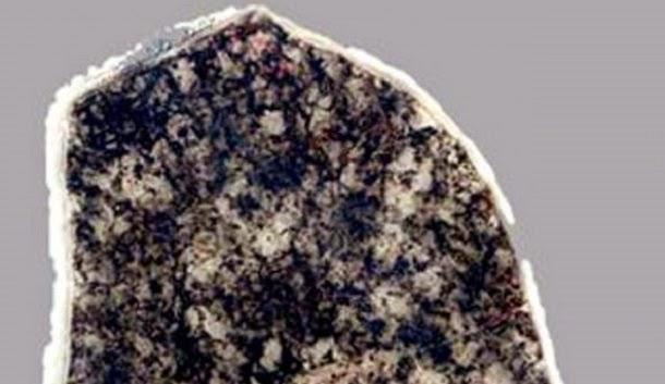 Descoberta bactéria que não evoluiu durante dois bilhões de anos