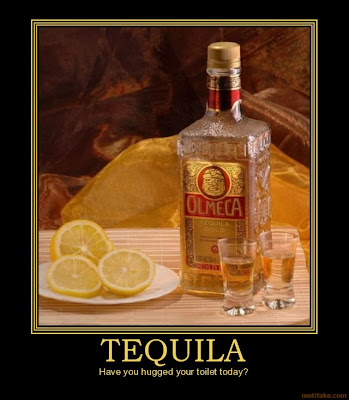 2 27 11 3 6 11 unmotivational posters demotivational for 1 tequila 2 tequila 3 tequila floor song