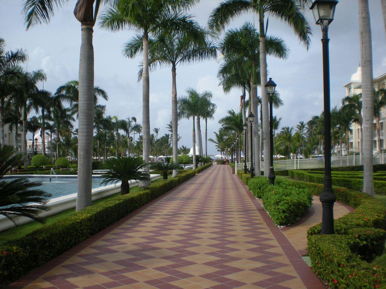 Riu walkway Punta Cana | Cordier Events