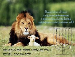 Efe 2:20  Edificados sobre el fundamento de los apóstoles y profetas, siendo la principal piedra de