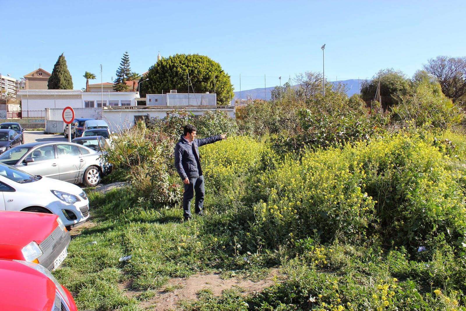 Motril digital el psoe plantea la necesidad de adecuar for Piscina municipal motril