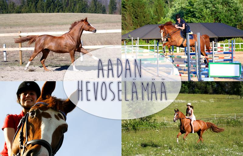 http://aadanhevoselamaa.blogspot.fi/