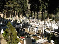 Νεκροταφείο στον ιερό χώρο των Δελφών. Απαιτείται καθαρμός του χώρου.