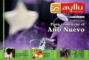 Tapa última edición Diciembre 2010 - Enero 2011