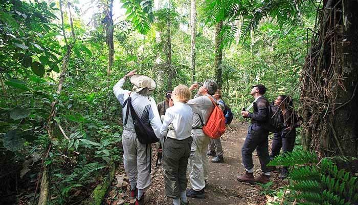 Las excursiones en el Parque Nacional del Manu, Perú