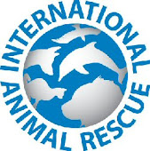 I.A.R. (resgate de animais em perigo e maltratados, rescue of animals in danger and abuse)