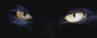 Capas para Facebook  olhos de gato preto