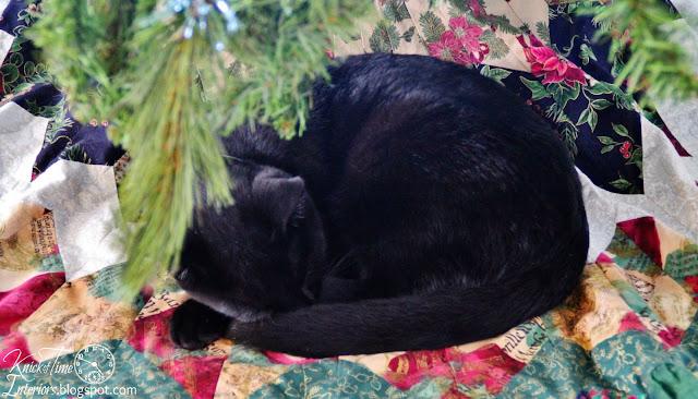 sleeping kitty under Christmas tree - KnickofTime.net