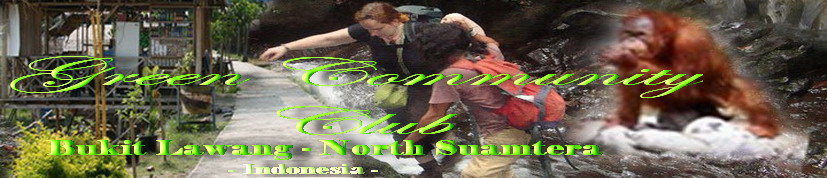 Bukit Lawang Trekking  I  Green Community Club  I  Indonesia