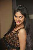 Madhumitha glam pics-thumbnail-20