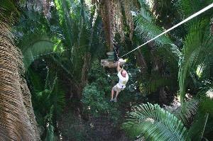 Roatan Christopher Tours : Roatan Excursions : Isla Roatan Canopy